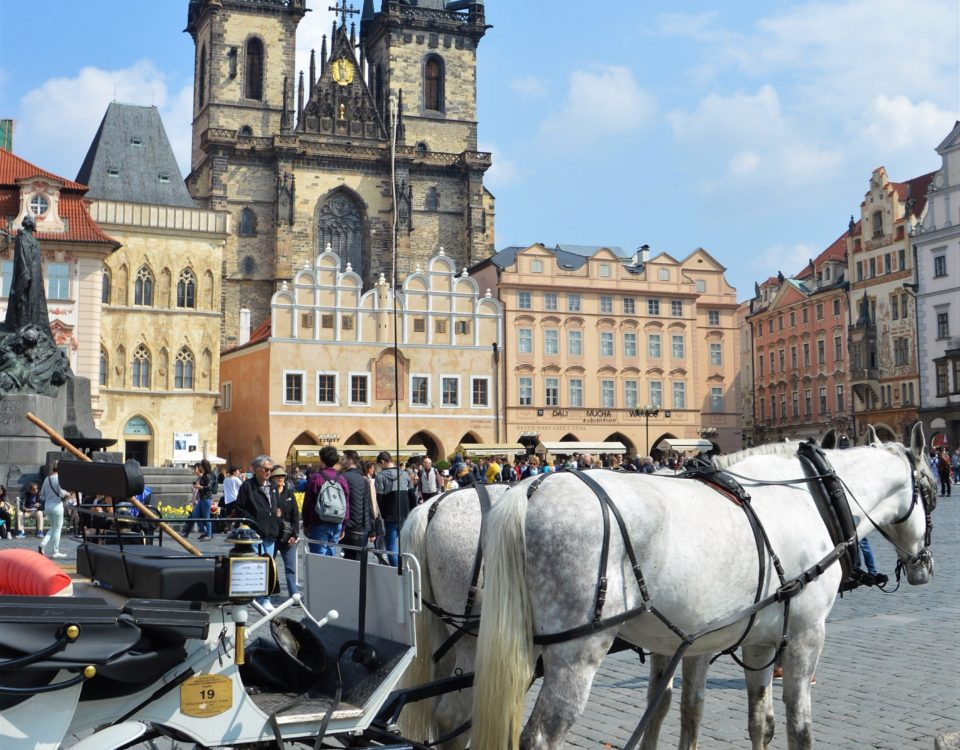 Horses on the Old Town  Square, Prague